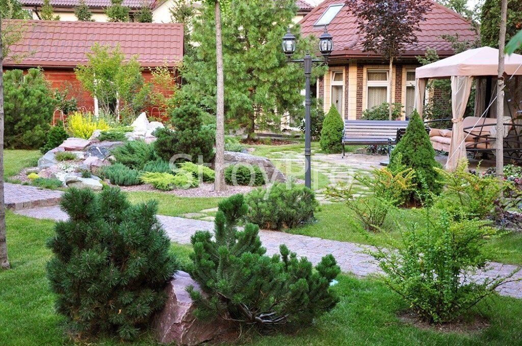 крупномеры в саду